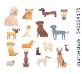 group of purebred dogs.... | Shutterstock .eps vector #542229175