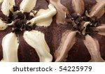 ice cream chocolate and vanilla | Shutterstock . vector #54225979