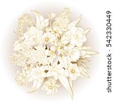 vector hand drawn primroses.... | Shutterstock .eps vector #542330449
