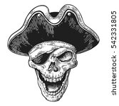 skull in pirate clothes eye
