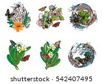 set hand draw butterfly with... | Shutterstock .eps vector #542407495