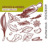 cooking spices  herbs and... | Shutterstock .eps vector #542428309