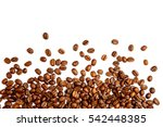roasted coffee beans isolated... | Shutterstock . vector #542448385