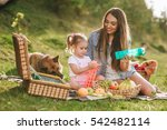 mother and daughter at a picnic ... | Shutterstock . vector #542482114
