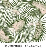 green leaves of palm tree on... | Shutterstock . vector #542517427