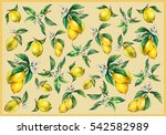 the background of the branches... | Shutterstock . vector #542582989