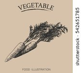 hand drawn vegetables isolated...