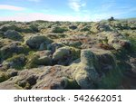 mossy lava rock field  iceland   Shutterstock . vector #542662051