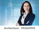 prestige business woman with... | Shutterstock . vector #542665945