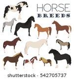 horse breeding icon set. farm... | Shutterstock .eps vector #542705737