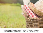 outdoor picnic at the summer...   Shutterstock . vector #542722699
