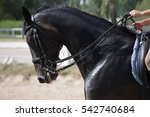 unknown rider in action on a... | Shutterstock . vector #542740684