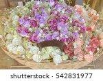 beautiful multicolored... | Shutterstock . vector #542831977