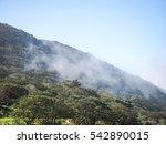mountain in fog | Shutterstock . vector #542890015