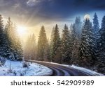 day and night concept of winter forest landscape.  winding road that leads into the spruce forest covered with snow - stock photo