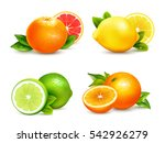 fresh citrus fruits whole and... | Shutterstock .eps vector #542926279