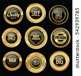 luxury golden retro badges... | Shutterstock .eps vector #542939785