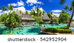 tropical vacations. swimming... | Shutterstock . vector #542952904