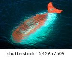 submarine researching waters | Shutterstock . vector #542957509