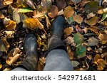 walk by the woods   from above  ... | Shutterstock . vector #542971681