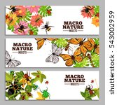 insects horizontal banners of... | Shutterstock . vector #543002959
