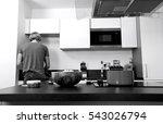 back view of man standing in... | Shutterstock . vector #543026794