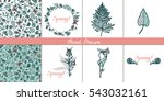 set cards with wild plants.... | Shutterstock .eps vector #543032161