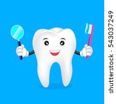 cute cartoon tooth character... | Shutterstock .eps vector #543037249