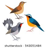 stylized birds   nightingales  | Shutterstock .eps vector #543051484