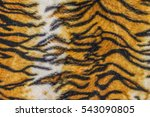 Tiger Texture Skin Background