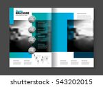 abstract business brochure... | Shutterstock .eps vector #543202015