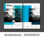 abstract business brochure... | Shutterstock .eps vector #543202015