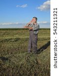Small photo of Farmer or agronomist in clover plant field after harvest, pointing and speaking by phone