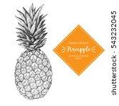 pineapple vector illustration.... | Shutterstock .eps vector #543232045