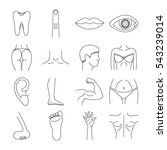 body parts icons set. outline... | Shutterstock .eps vector #543239014
