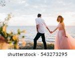 walking wedding couple near the ... | Shutterstock . vector #543273295