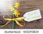 sunny spring narcissus  label ...   Shutterstock . vector #543293824
