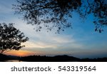 Silhouette Colorful Tree And...