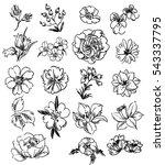 flower set | Shutterstock .eps vector #543337795