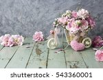 pink carnation in bicycle with...   Shutterstock . vector #543360001
