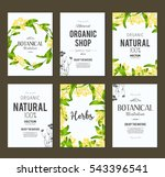 plants and herbs banners set | Shutterstock .eps vector #543396541