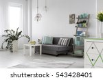 adorable and spacious modern... | Shutterstock . vector #543428401