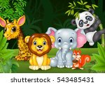 cartoon wild animal in the... | Shutterstock .eps vector #543485431
