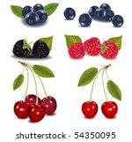 photo realistic vector... | Shutterstock .eps vector #54350095