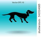 long dachshund vector... | Shutterstock .eps vector #543534085