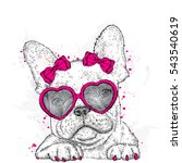 cute puppy with glasses heart.... | Shutterstock .eps vector #543540619