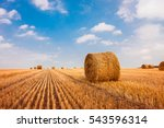 hay bale. agriculture field... | Shutterstock . vector #543596314