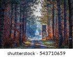 observation seat forest | Shutterstock . vector #543710659
