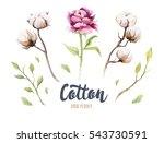 set of hand drawn bohemian... | Shutterstock . vector #543730591