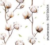 watercolor vintage background... | Shutterstock . vector #543730654